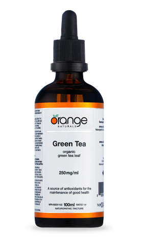 Green Tea Tincture